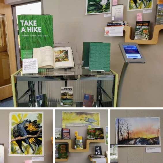 collage of library display pictures